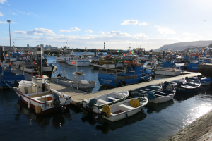 Porto de Pesca de Setúbal
